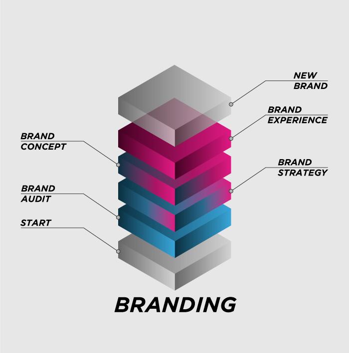 branding-infographic-vece-V1